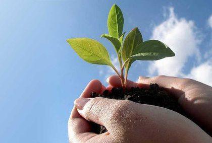 Teknologi Ramah Lingkungan yang Harus Anda Ketahui